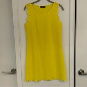 Cheerful Yellow Scallop Hem Shift Dress size M